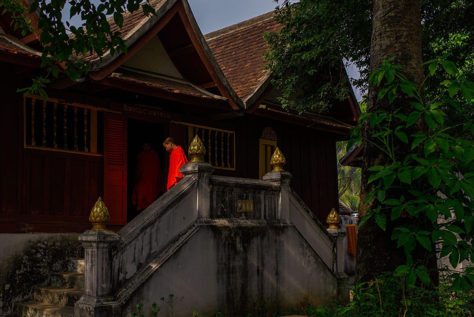 Junge Mönche im Kloster