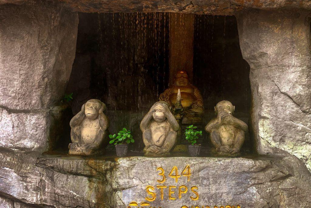 Die Weisheit der drei Affen