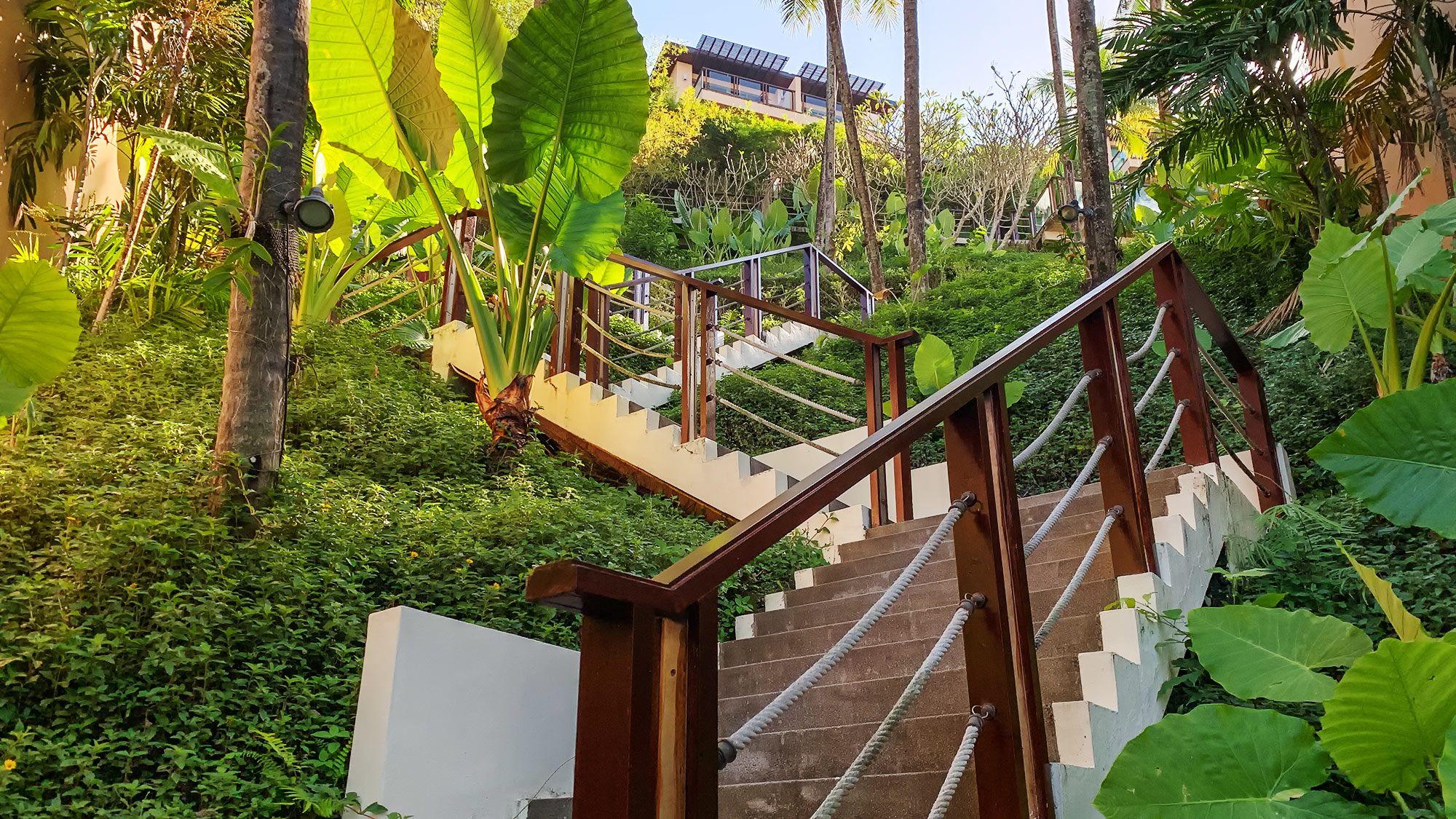 Treppen nach oben durch den Dschungel